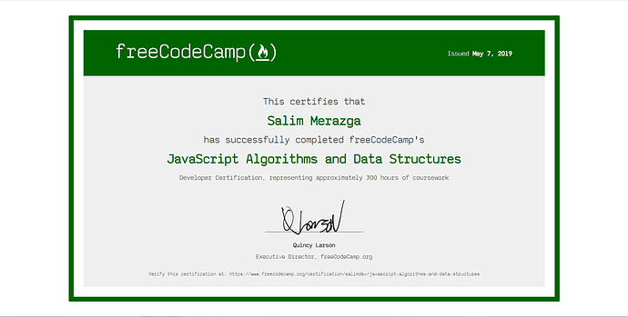 Wow I got JavaScript Algorithms and Data Structures