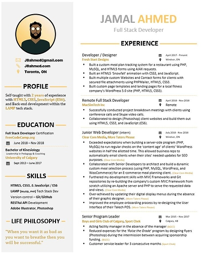 resume-design-2-screenshot