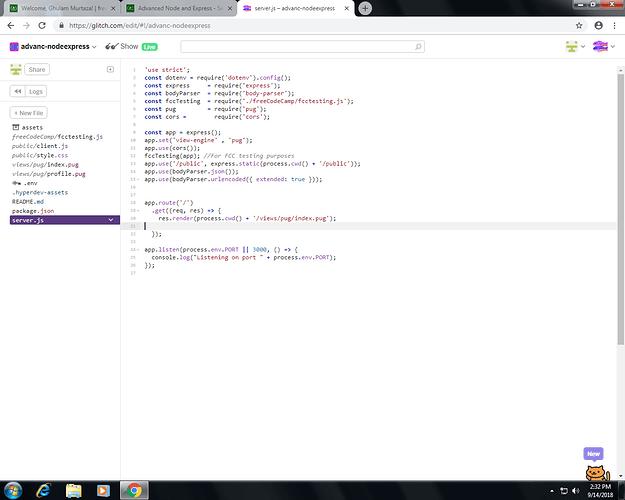 Advanced node and express set up a template engine help me.